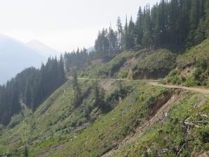 Road failures may impact drinking water and fish habitat